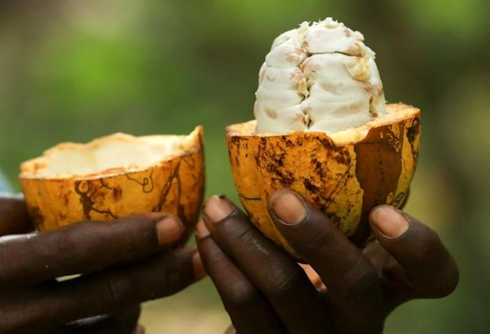 US and European food companies used child slaves in Africa to boost profit