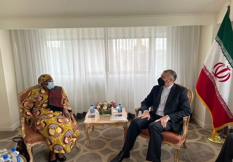 Iran's top diplomat underscores importance of Africa in Tehran's foreign policy