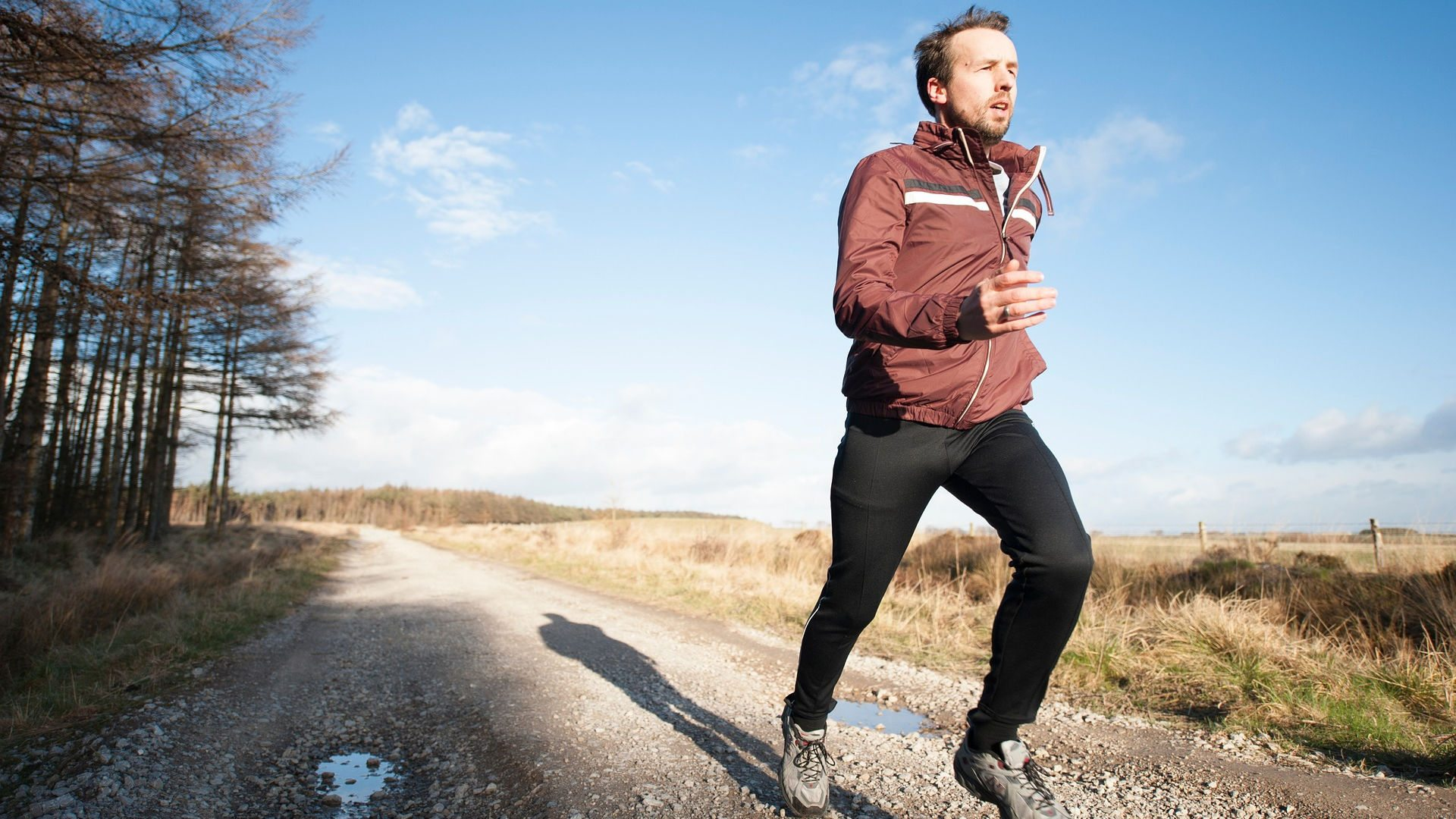 New study says exercise can stop cancer in its tracks